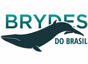 Logo do Projeto Brydes de Brasil