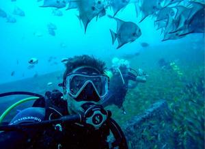 Pessoa mergulhando em água cristalina, rodeado de peixes com diferentes formatos e cores.
