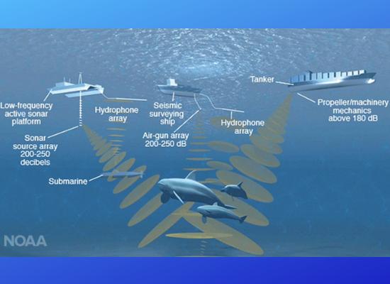 A imagem mostra três embarcações na parte superior e de cada uma dessas embarcações há ondas sonoras sendo propagadas pelo oceano. Essas ondas sonoras estão direcionadas a três mamiferos marinhos e um submarino na parte inferior da figura.