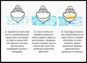 Ilustração de como ocorre o processo de água de lastro. Há 3 navios desenhados e embaixo de cada um deles há um textinho explicando. No primeiro navio está 1. Quando um navio está com o compartimento de carga vazio, seu tanque de lastro é preenchido com água do mar para que ele tenha estabilidade durante a navegação. No segundo navio, 2. Isso se torna um problema porque os navios captam a água no porto doador e despejam no porto receptor, que na maioria das vezes são ambientes totalmente diferentes. No terceiro navio, 3. Essa água costuma ser transportada de um país a outro e, quando eliminados no meio ambiente, podem disseminar espécies potencialmente perigosas e invasoras.