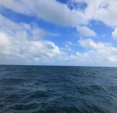 O que escondem os oceanos? Mitos, medos, curiosidades e fatos sobre o maior ecossistema do planeta