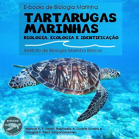 600x600 instagram tartarugas.jpg