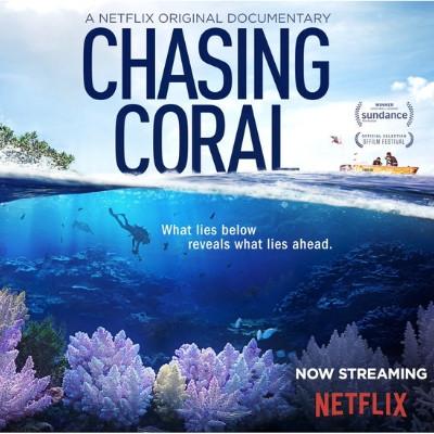 Foto do documentário Chasing Coral. Ao fundo há um corte longitudinal do oceano, mostrando tanto o fundo do oceano como a superfície. Na superfície vemos ao lado direito um barco com duas pessoas e no esquerdo o que parece ser o pedaço de uma ilha. No fundo do oceano, vemos um mergulhador, alguns peixes e corais.