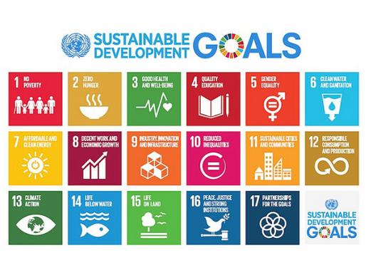 Vida na Água: Objetivos de Desenvolvimento Sustentável #14 (Agenda ONU 2030)