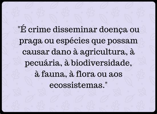 """Imagem com o seguinte escrito: """"É crime disseminar doença ou praga ou espécies que possam causar dano à agricultura, à pecuária, à biodiversidade, à fauna, à flora ou aos ecossistemas""""."""