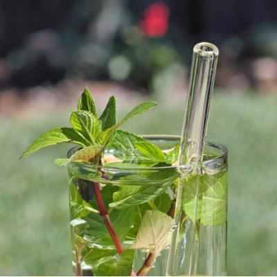Canudo de vidro ao lado de uma planta dentro de um copo de vidro.
