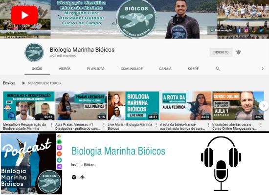 Na porção superior da montagem está a reprodução da capa do canal do youtube do Instituto Bióicos e o símbolo do youtube, à esquerda. Na parte de baixo, está a reprodução da capa do podcast do Instituto bióicos, com um logo de um fone e um microfone à direita.