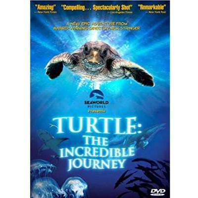Foto do documentário Turtle: the incredible journey mostrando uma tartaruga no oceano e na parte inferior há algumas águas vivas e outros animais marinhos.