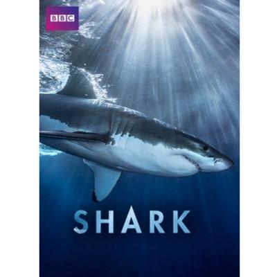Foto do documentário Shark com a foto de um tubarão branco no oceano sendo iluminado por um feixe de luz vindo da superfície.