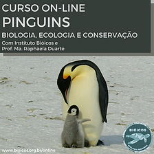 Curso On-line Pinguins.png