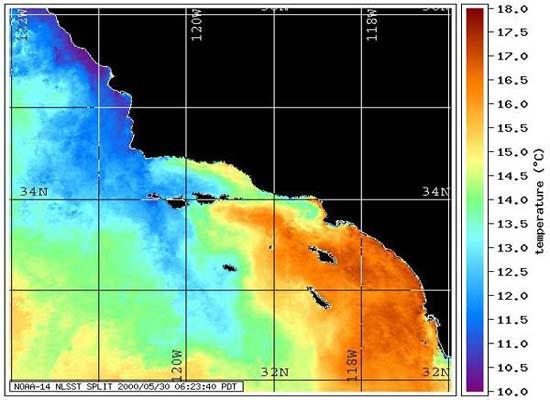 Imagem de satélite da costa da Califórnia com uma legenda de temperatura superficial do mar variando de 18 graus celsius (vermelho) até 10 graus celsius (azul) identificando uma zona de ressurgência através de baixas temperaturas.
