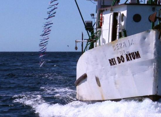 Fotografia de uma embarcação com a rede de toriline, uma linha com várias fitas amarradas.