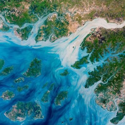 Imagem de satélite colorida de um estuário. Nela, pode-se observar a foz de um rio desaguando no oceano bem como menores vales de rios afogados ao lado.