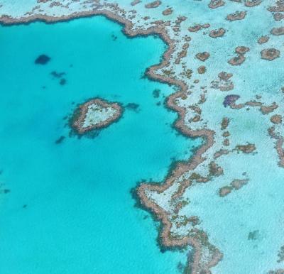 Impactos das mudanças climáticas em recifes de coral ao longo do tempo: uma breve análise