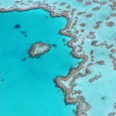 Fotografia aérea de um trecho da Grande Barreira de Corais Australiana em águas  que variam do azul-cristalino para o azul-turquesa. Um agrupamento de corais forma uma linha maior ao longo do mar, enquanto outros formam círculos sob a água.