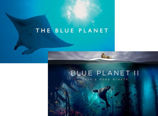 Documentários sobre Biologia Marinha - parte 1: os oceanos