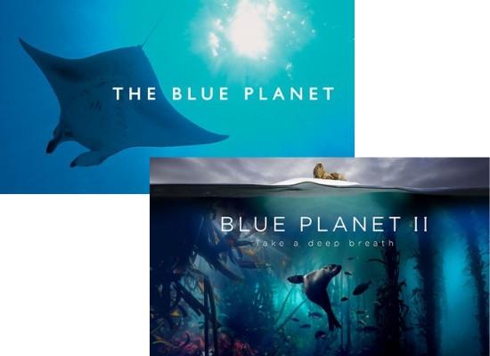Foto dos documentários The Blue Planet I e II. Em The Blue Planet I ha uma arraia de fundo e em The Blue Planet II há a imagem de um leão marinho no fundo do mar.