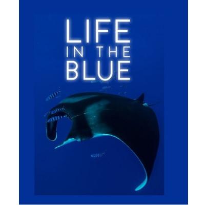 Foto do documentário Life in the Blue. Na parte inferior há a imagem de uma arraia e alguns peixes.