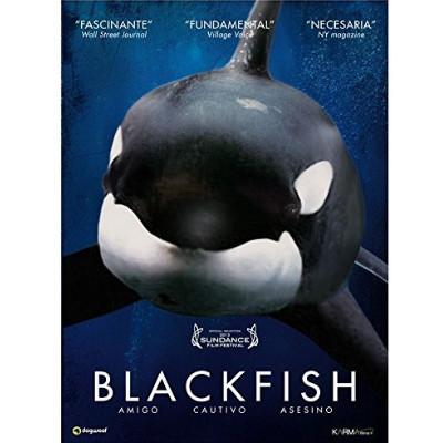 Foto do documentário Blackfish com fundo azul e uma orca na frente.