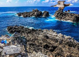 Alt txt: Imagem de três rochedos do ASPSP. Os rochedos são bastante irregulares com coloração em tons de marrom e cinza. Um está maior na parte inferior da imagem ocupando metade da foto, os demais rochedos aparecem no fundo, mais para o quadrante superior direito da foto. Estão emersas em um mar bem azul com ondas quebrando próximo das ilhas. O céu é azul claro com nuvens. Há um ponto de pesquisa no canto inferior esquerdo da imagem sobre o rochedo principal. No canto superior direito há uma ave marinha voando direcionada para a direita.