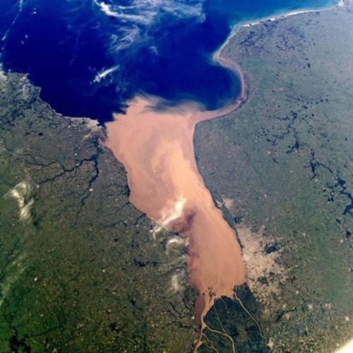 fotografia aérea de um rio barrento encontrando com o mar, de águas mais azuis. Nas margens do rio e do mar há vegetação e é possível ver alguns cursos de rios mais estreitos, que também desembocam no mar.