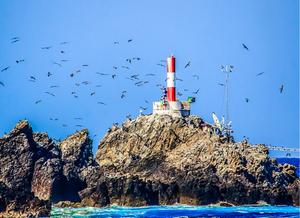 Foto da frente de um grande rochedo do ASPSP. As rochas são bastante irregulares com tons marrons, sendo marrom mais escuro perto da água e mais claro perto do céu. A ilha está emersa no mar azul. O céu é azul claro e limpo. Há um farol vermelho com listra branca no topo da ilha e várias aves marinhas voando circulando o farol.