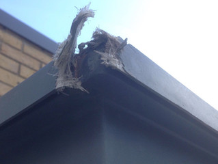 Fibreglass repair completed to badly damaged porch canopy.