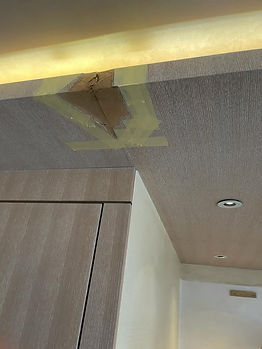 Thousands of pounds saved restoring a water-damaged ceiling