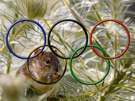 A happy new Olympic year!