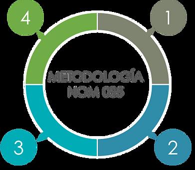 Metodologia NOM 035.png