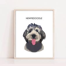 Newfiedoodlee Dog Illustration