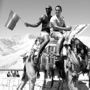 אתניות ומיניות: סובייקטיביות מזרחית-הומואית חדשה ותיירות גאה בתל אביב / גילי הרטל ואורנה ששון-לוי