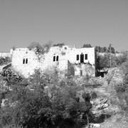 פרופסיונליזם בישראל: בין שימור כוחה של הפרופסיה להגנת ההגמוניה / הדס שדר וצביקה אור