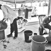 להוציא פסולת מאשפה: רשמים אנתרופולוגיים מסקרי אשפה ביתית בישראל / טליה פריד