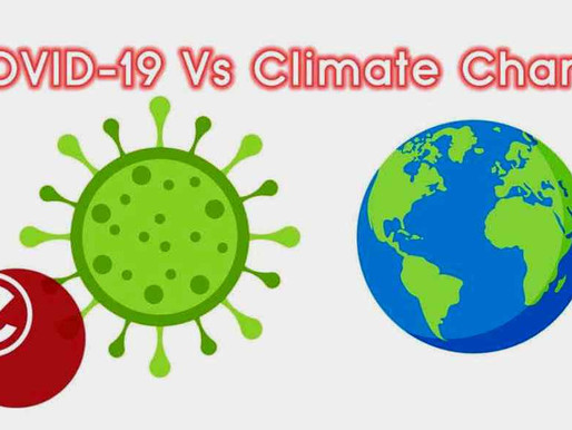 Why climate action matters for governments battling COVID-19