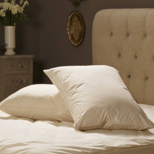 Allergy Protection Pillow