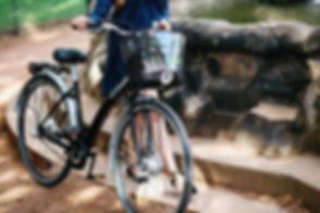 Fahrradverleih Dresden GreenBike