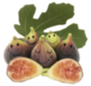 Fruto de higo Black Mission
