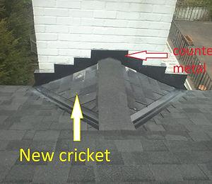 Chimney-Crickets.jpg