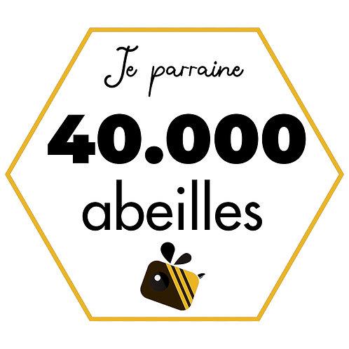 40.000 abeilles (20 pots de miel) - Paiement unique
