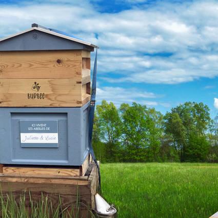 Votre nom sur la ruche