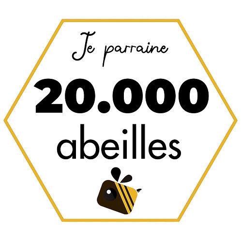 20.000 abeilles (12 pots de miels)