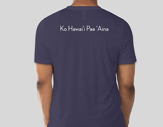 last aloha aina shirt dark blue back.JPG