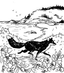 Wild Roses_Blanche de Fox.png