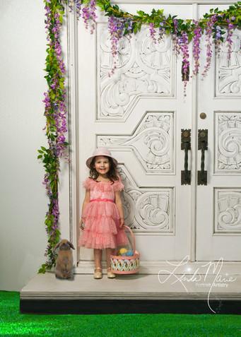 Introducing our 'Spring Door'