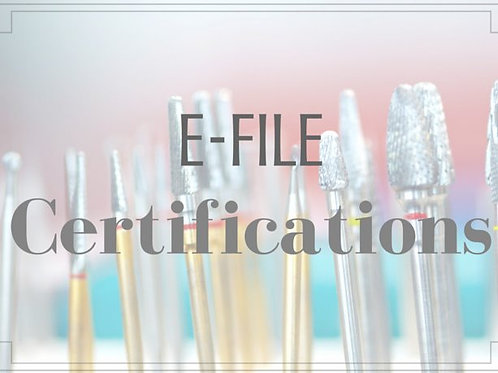 Efile Certification - Novice