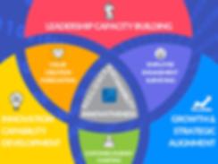STRATA IOC Venn Diagram.png