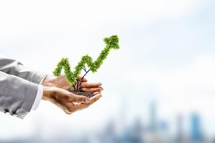 Insights on Value Creation