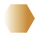 hexagon wix icons yellow (5).png