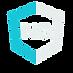 enterpriseNG logo (4).png